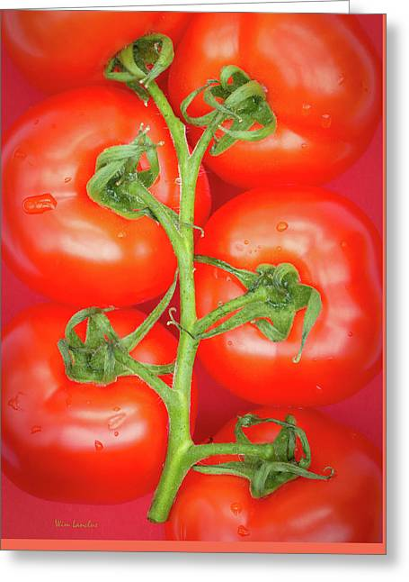Tomato Tree Greeting Card by Wim Lanclus