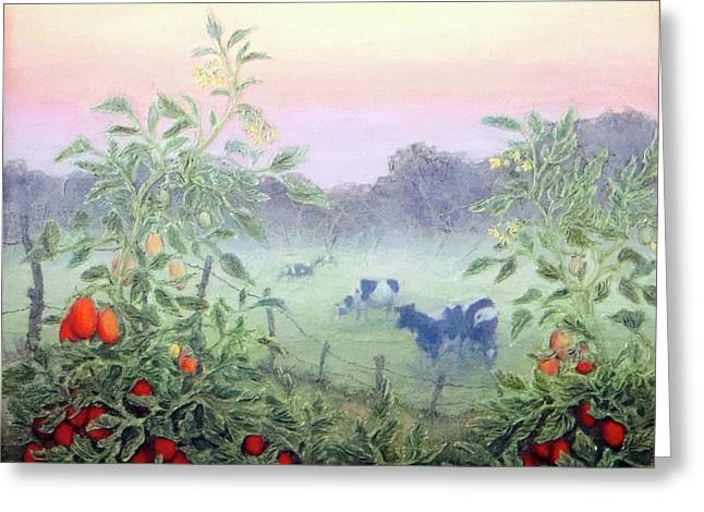 Tomatoes In The Mist Greeting Card by Lee Baker DeVore