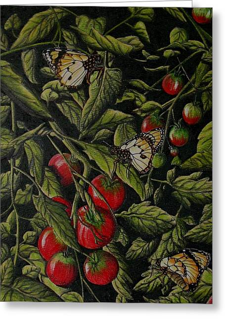 Tomatoes Greeting Card by Joshua Armstrong
