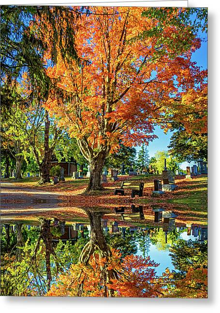 Tomb With A View 2 Greeting Card by Steve Harrington
