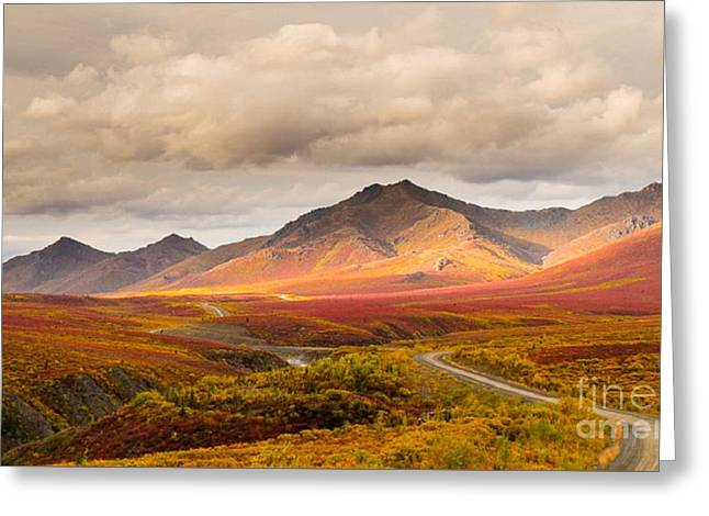 Tombstone Territorial Park Yukon Greeting Card
