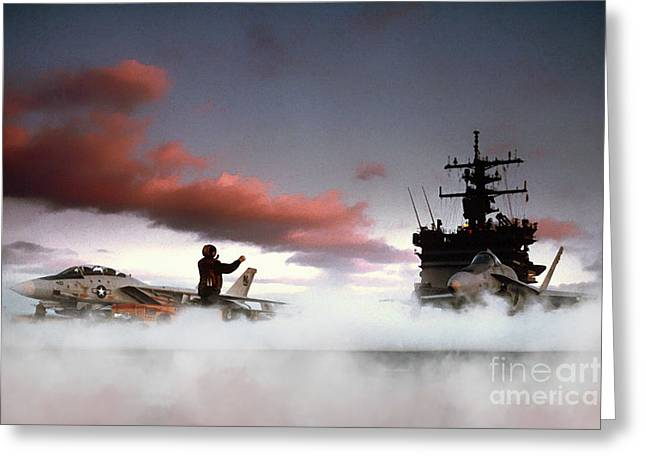 Tomcat And Hornet Greeting Card