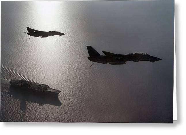 Tomcat Silhouette  Greeting Card by Peter Chilelli