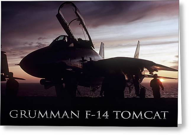 Tomcat Sunset Greeting Card by Peter Chilelli