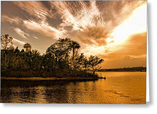 Tomoka River At Sunset Greeting Card