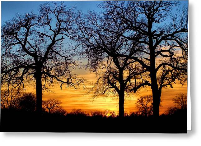 Tones Of Home Greeting Card by Karen M Scovill