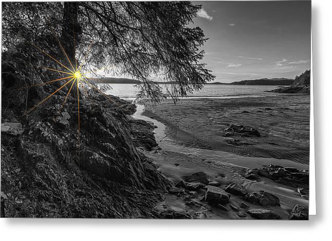 Tonquin Beach Sun Rays Greeting Card