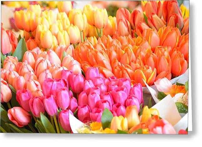 Tons Of Tulips Greeting Card