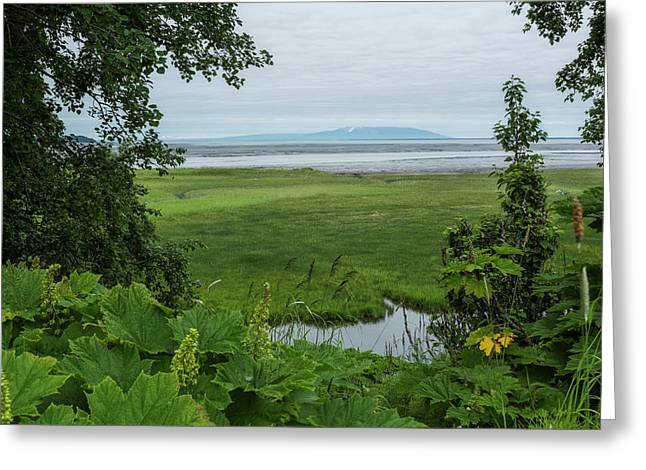 Tony Knowles Coastal Trail Greeting Card