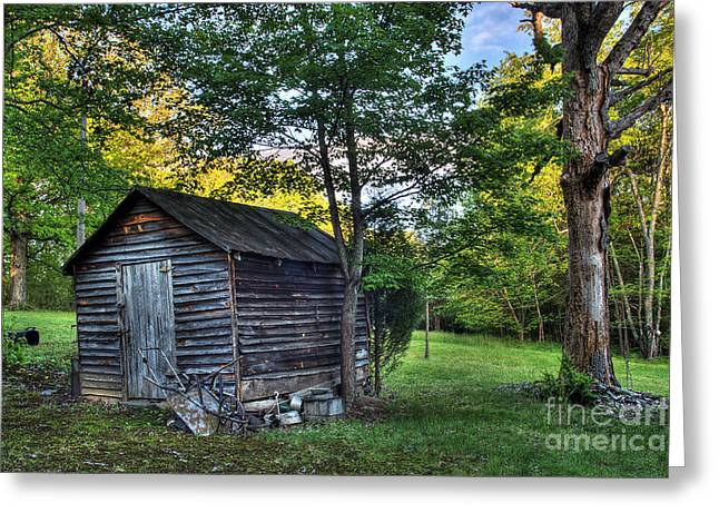 Toolshed Greeting Card by Pete Hellmann