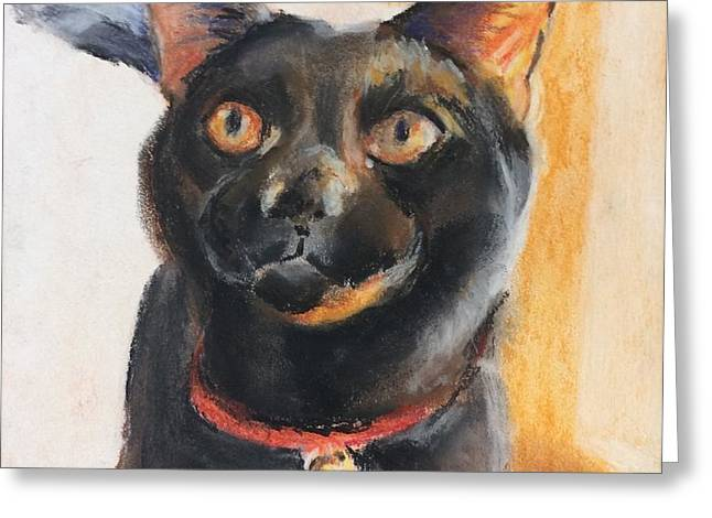 Toothless Greeting Card by Sarah Vandenbusch