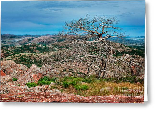 Top Of Mt. Scott Looking West Greeting Card by Tamyra Ayles