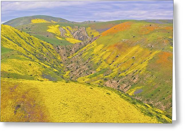 Greeting Card featuring the photograph Top Of The Temblor Range by Marc Crumpler