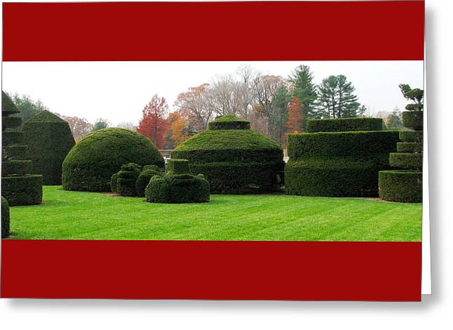 Topiary Garden Greeting Card by Angela Davies
