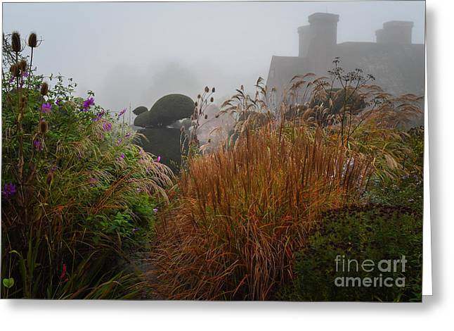 Topiary Peacocks In The Autumn Mist, Great Dixter 2 Greeting Card