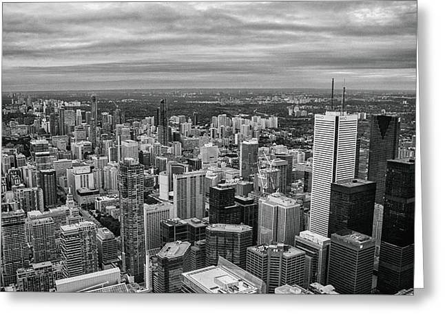 Toronto Skyline Greeting Card by Martin Newman