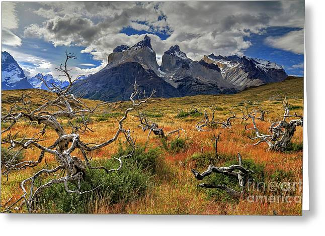 Torres Del Paine 18 Greeting Card