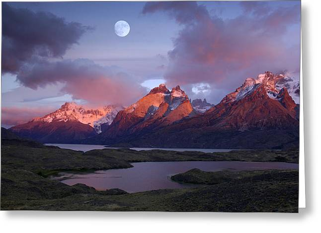 Torres Del Paine Iv Greeting Card by Christian Heeb
