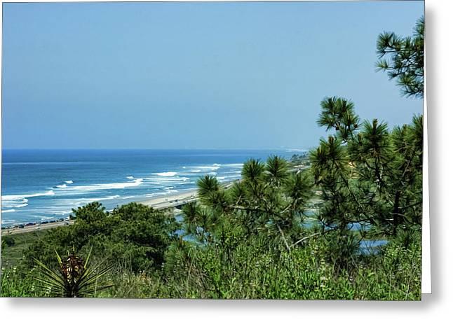 Torrey Pines - The Beach And The Lagoon Through The Trees Greeting Card by Georgia Mizuleva