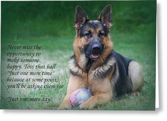 Toss That Ball Greeting Card