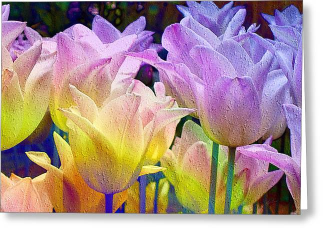 Totally Tulips Two Greeting Card