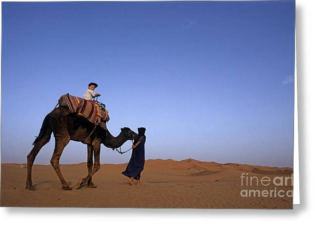 Touareg Man Leading Boy Riding Camel In Sahara Desert Greeting Card by Sami Sarkis