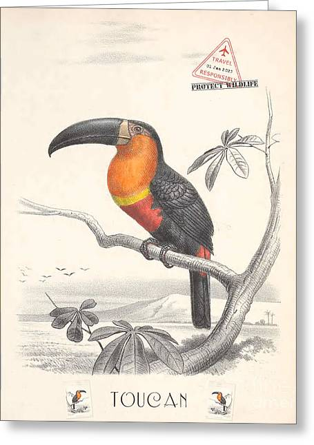 Greeting Card featuring the digital art Toucan Bird Responsible Travel Art by Nola Lee Kelsey