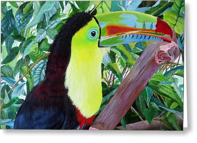 Toucan Portrait 2 Greeting Card by Marilyn McNish