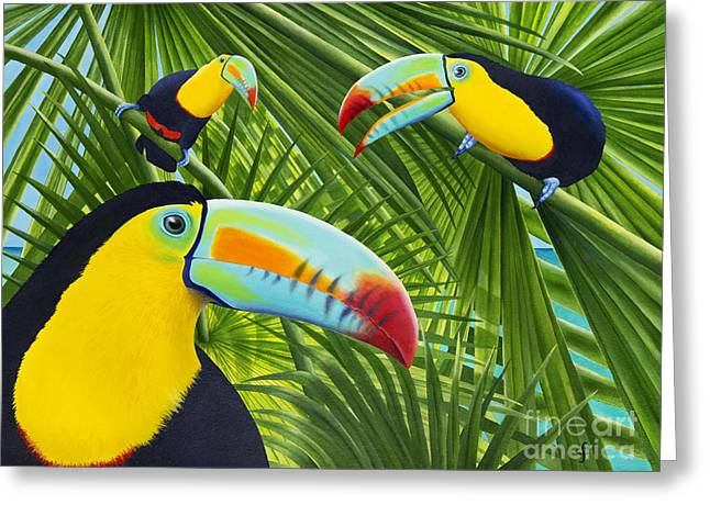 Toucan Threesome Greeting Card