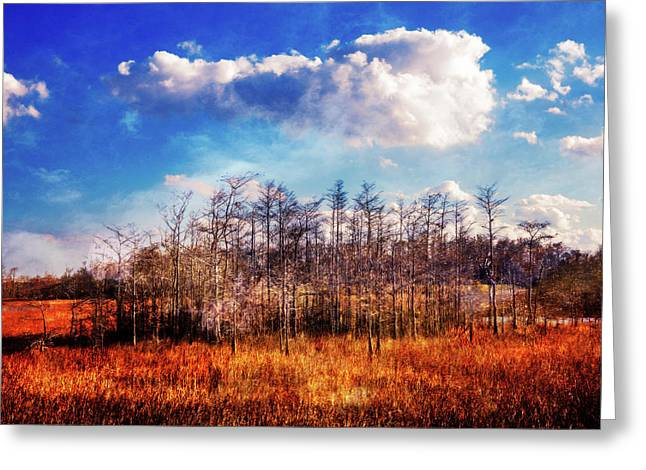 Greeting Card featuring the photograph Touch Of Autumn In The Glades by Debra and Dave Vanderlaan