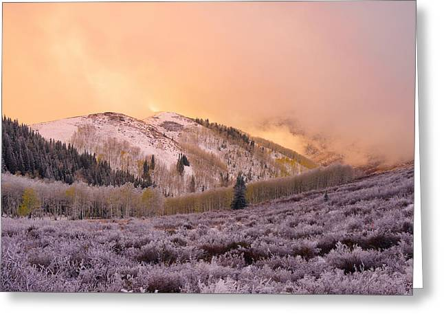 Touch Of Winter Greeting Card by Chad Dutson