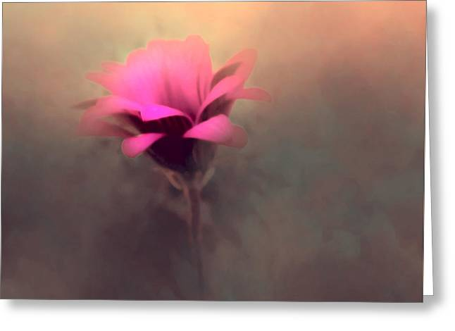 Touched By The Light Greeting Card by KaFra Art