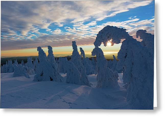Touched From The Winter Sun Greeting Card by Andreas Levi