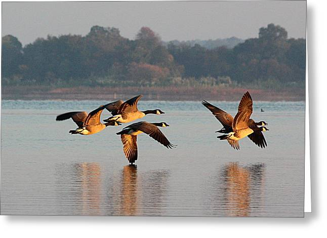 Touching Down At Sunrise Greeting Card