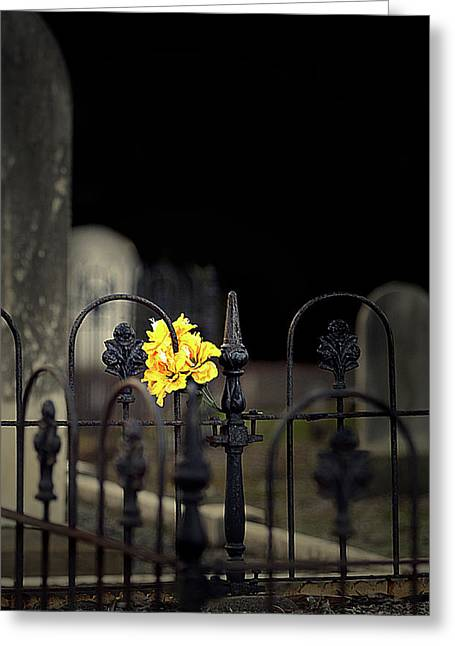 Final Resting Place Greeting Cards - Toujours Souvenu Greeting Card by Marion Cullen