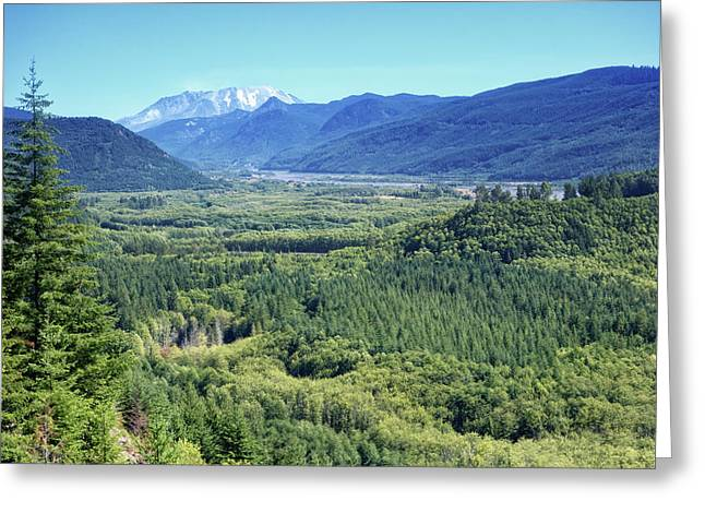 Toutle Valley, Wa Greeting Card