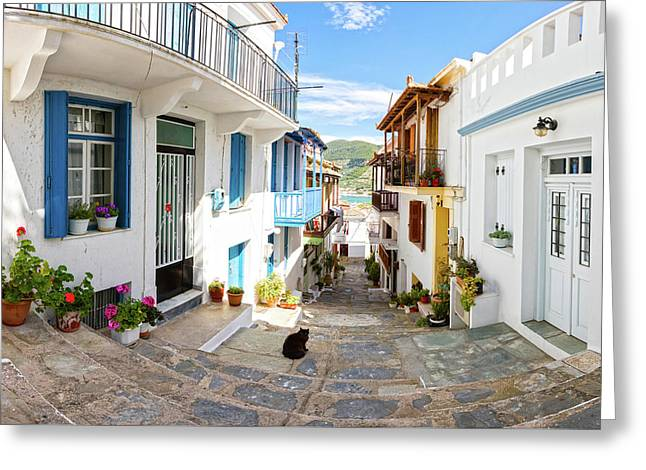 Town Of Skopelos Greeting Card by Evgeni Dinev