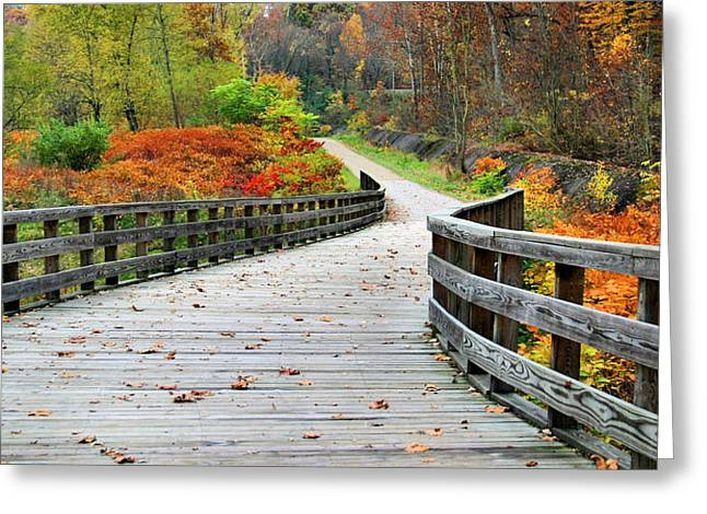 Towpath In Summit County Ohio Greeting Card by Kristin Elmquist