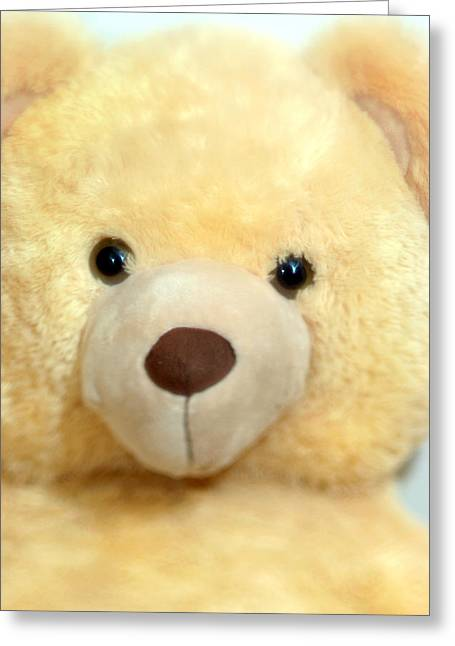 Toy Bear-0089 Greeting Card by Sean Shaw