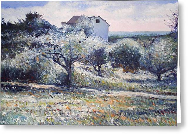 Track Leading Alongside Orchard With Farmhouse Near Monte Cardeto Italy 2009 Greeting Card by Enver Larney