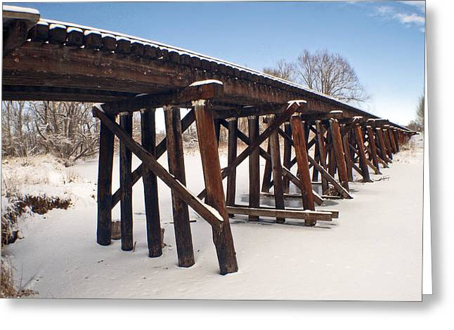 Tracks After The Snow Storm Greeting Card by James Steele