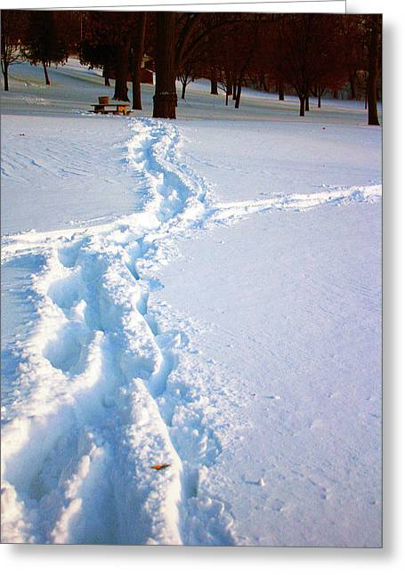 Snowmageddon Greeting Cards - Tracks Greeting Card by Angela Siener