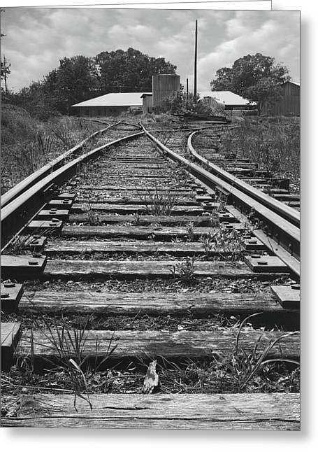 Greeting Card featuring the photograph Tracks by Mike McGlothlen