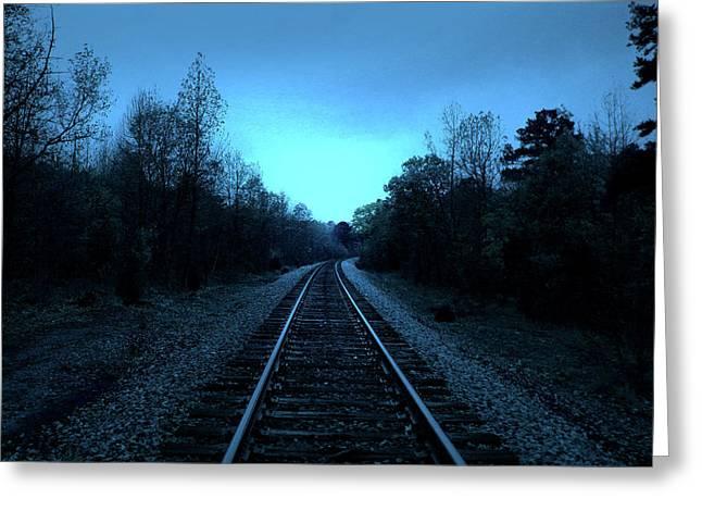 Tracks Of Dawn Greeting Card by Nina Fosdick