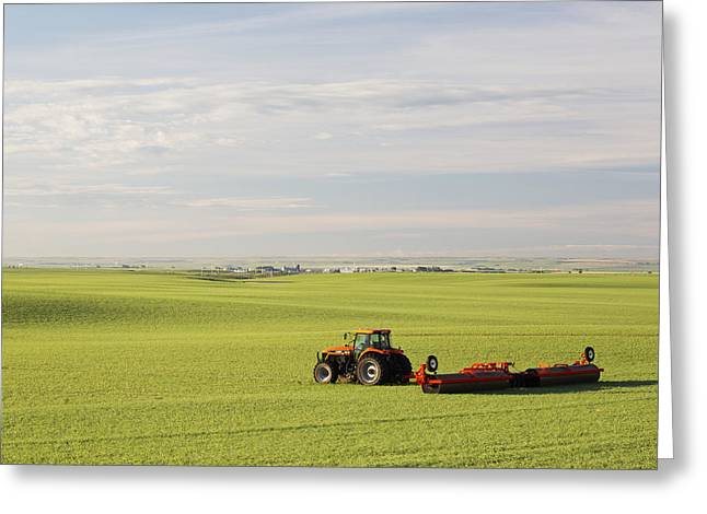 Tractor In A Green Grain Field Pulling Greeting Card