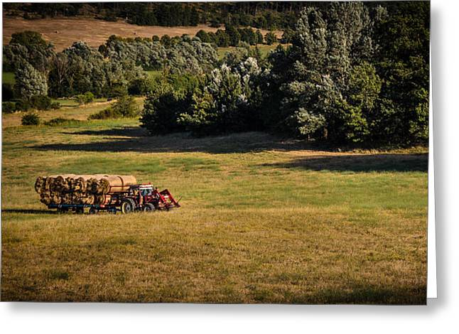 Tractor In Provence Greeting Card by Mariano Medda
