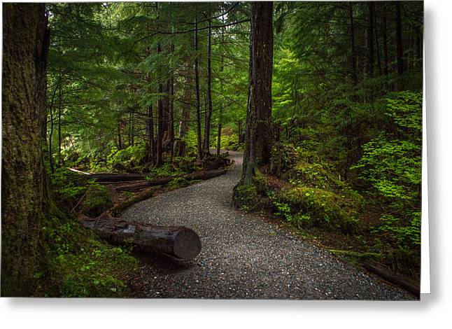 Trail Around Ward Lake Ketchikan Alaska Greeting Card by Michael J Bauer