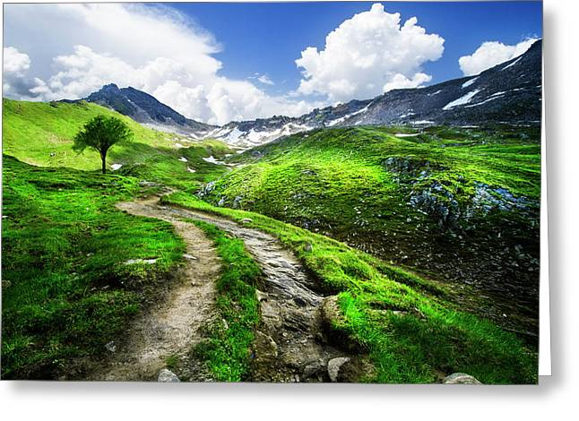 Trail Into The Mountains Greeting Card
