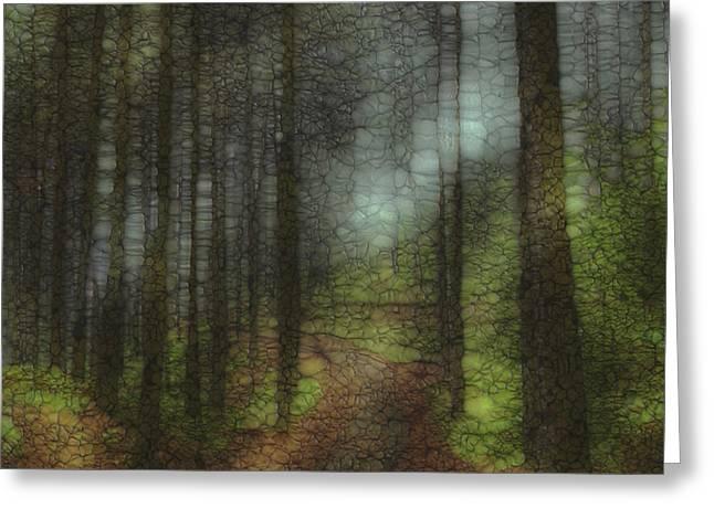 Trail Series 6 Greeting Card by Jack Zulli