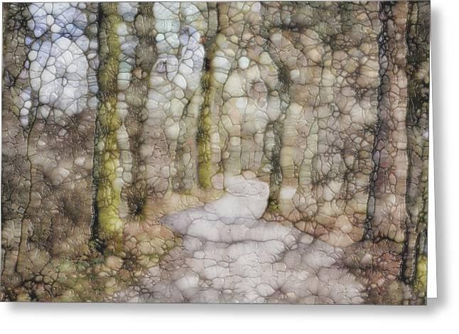 Trail Series Greeting Card by Jack Zulli